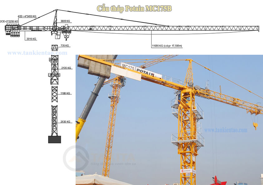Cẩu tháp Potain MC175